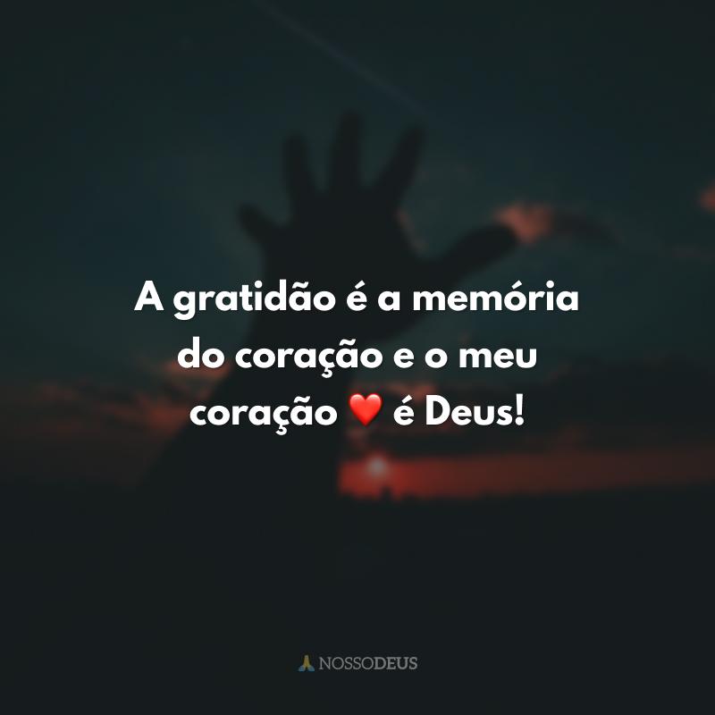 A gratidão é a memória do coração e o meu coração ❤ é Deus!