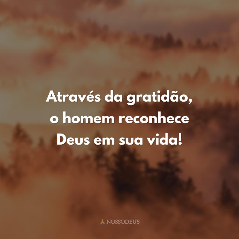Através da gratidão, o homem reconhece Deus em sua vida!
