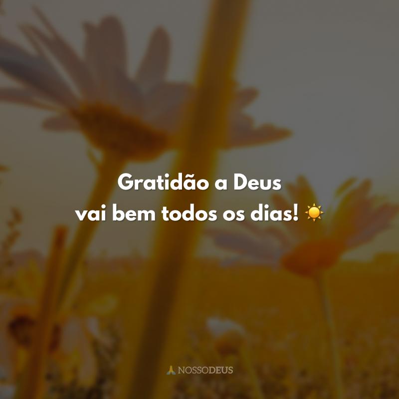 Gratidão a Deus vai bem todos os dias! ☀