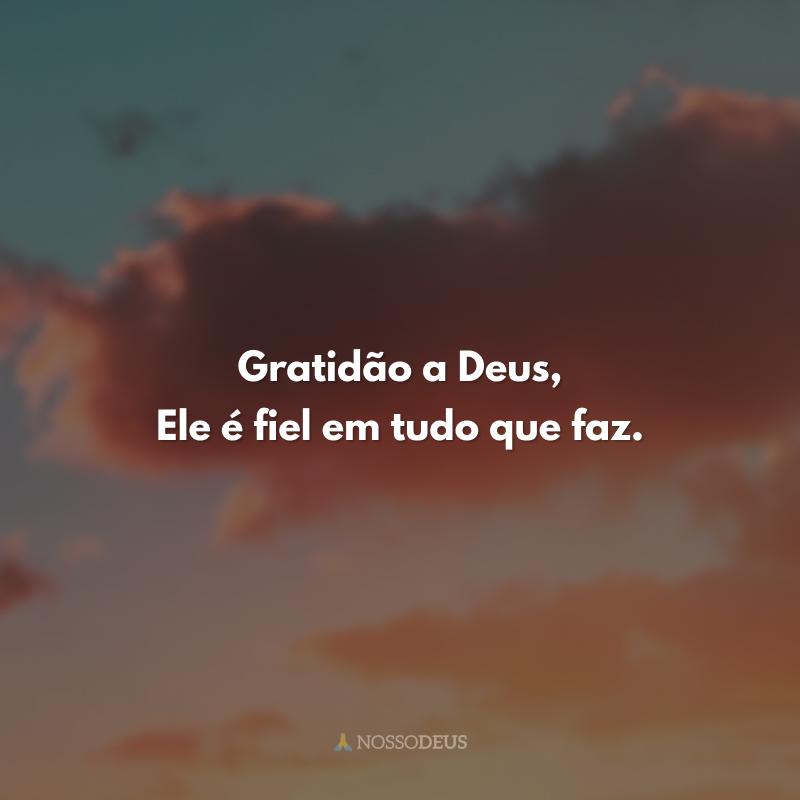 Gratidão a Deus, Ele é fiel em tudo que faz.