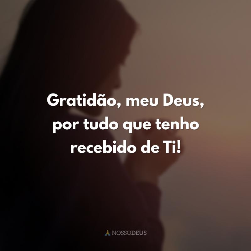 Gratidão, meu Deus, por tudo que tenho recebido de Ti!