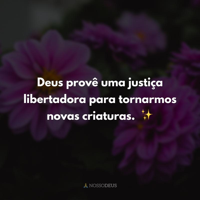 Deus provê uma justiça libertadora para tornarmos novas criaturas.  ✨