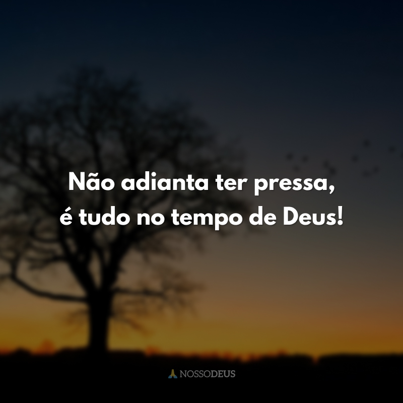 Não adianta ter pressa, é tudo no tempo de Deus!