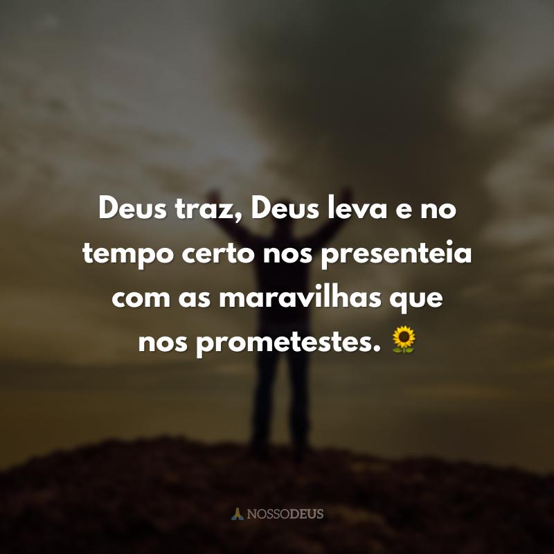 Deus traz, Deus leva e no tempo certo nos presenteia com as maravilhas que nos prometestes. 🌻