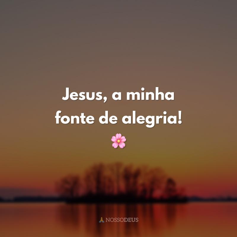 Jesus, a minha fonte de alegria! 🌸