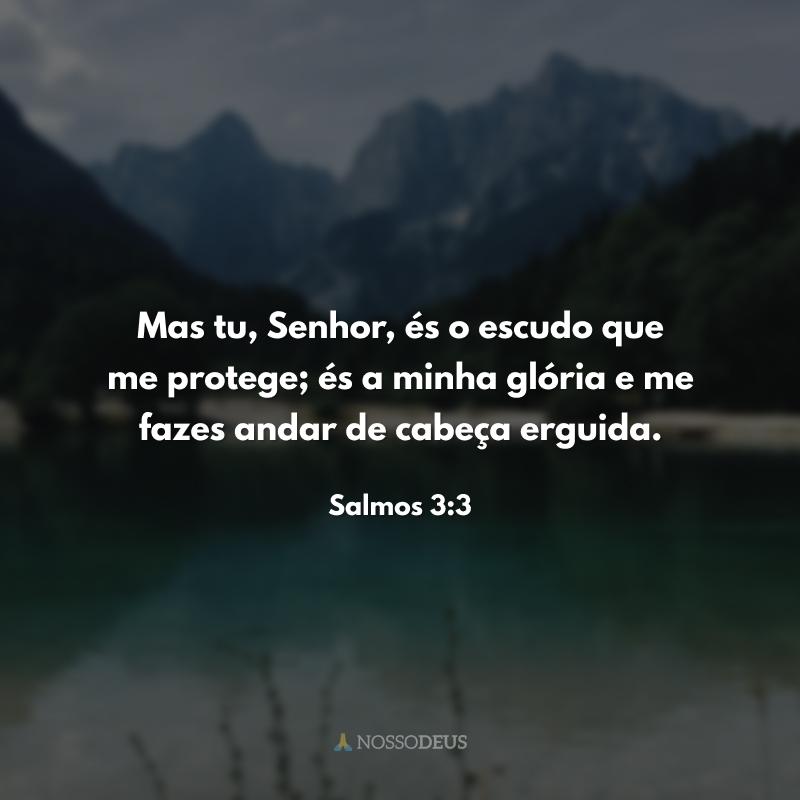 Mas tu, Senhor, és o escudo que me protege; és a minha glória e me fazes andar de cabeça erguida.