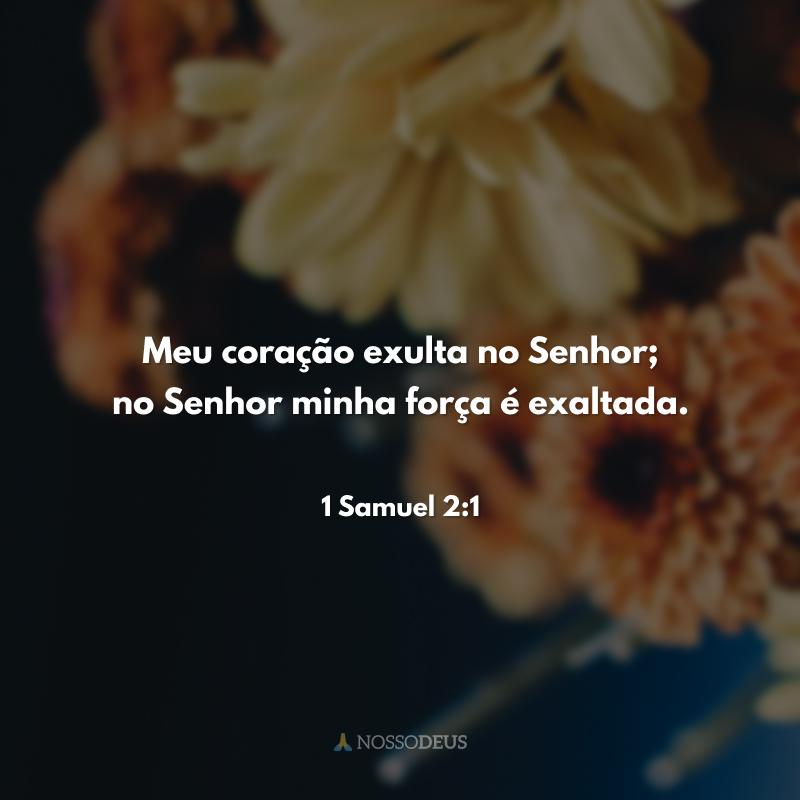 Meu coração exulta no Senhor; no Senhor minha força é exaltada.