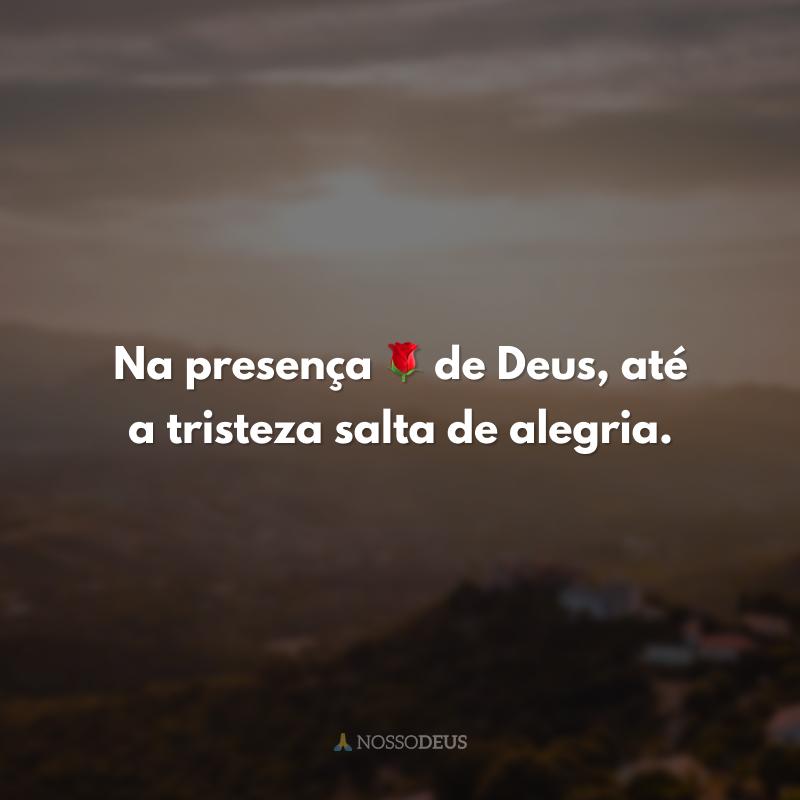 Na presença 🌹 de Deus, até a tristeza salta de alegria.