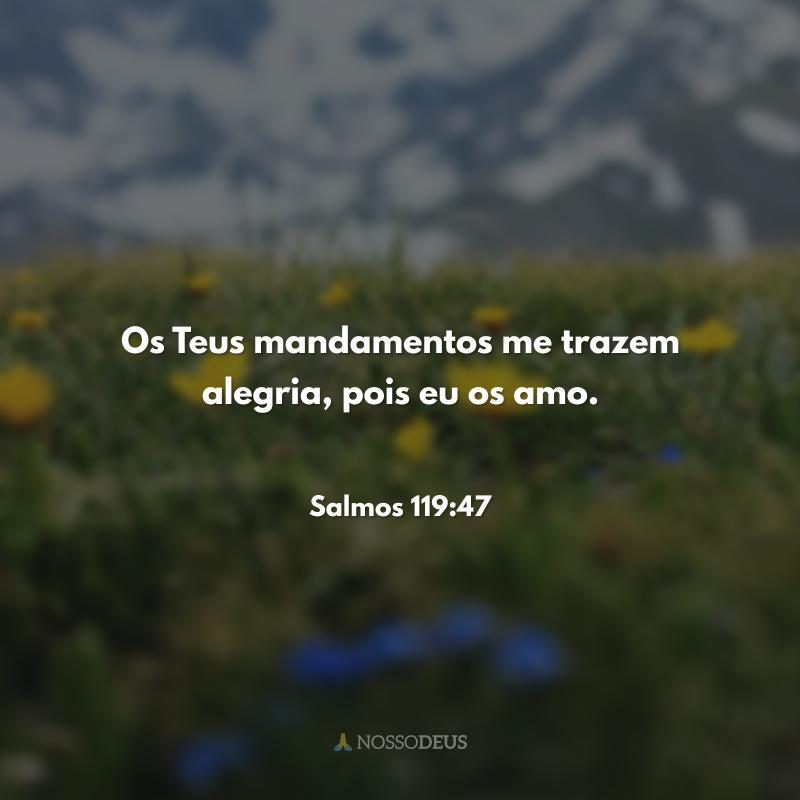 Os Teus mandamentos me trazem alegria, pois eu os amo.