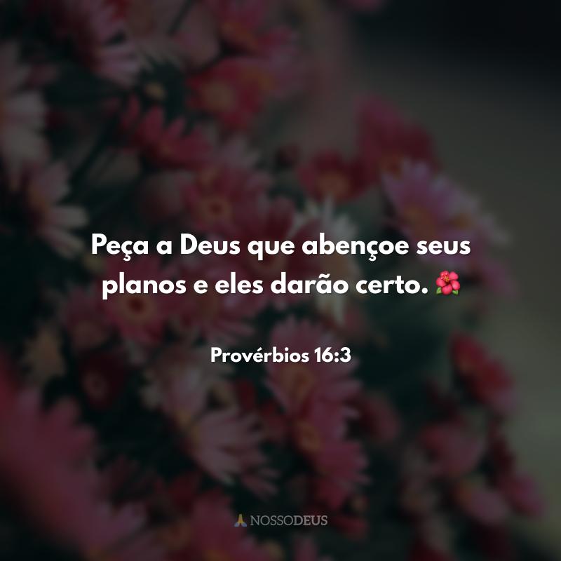 Peça a Deus que abençoe seus planos e eles darão certo. 🌺