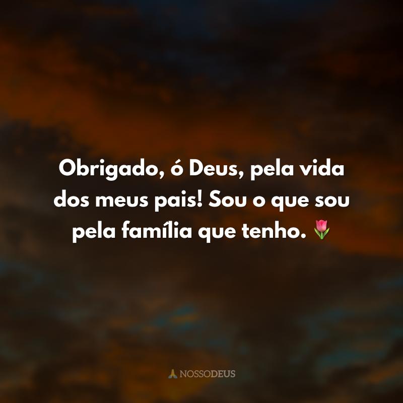 Obrigado, ó Deus, pela vida dos meus pais! Sou o que sou pela família que tenho. 🌷