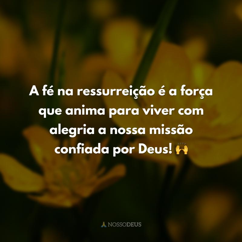 A fé na ressurreição é a força que anima para viver com alegria a nossa missão confiada por Deus! 🙌