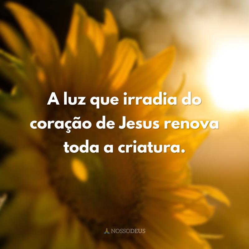 A luz que irradia do coração de Jesus renova toda a criatura.