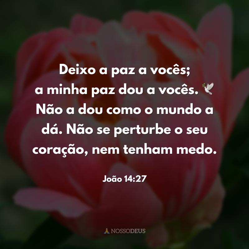Deixo a paz a vocês; a minha paz dou a vocês. 🕊 Não a dou como o mundo a dá. Não se perturbe o seu coração, nem tenham medo.