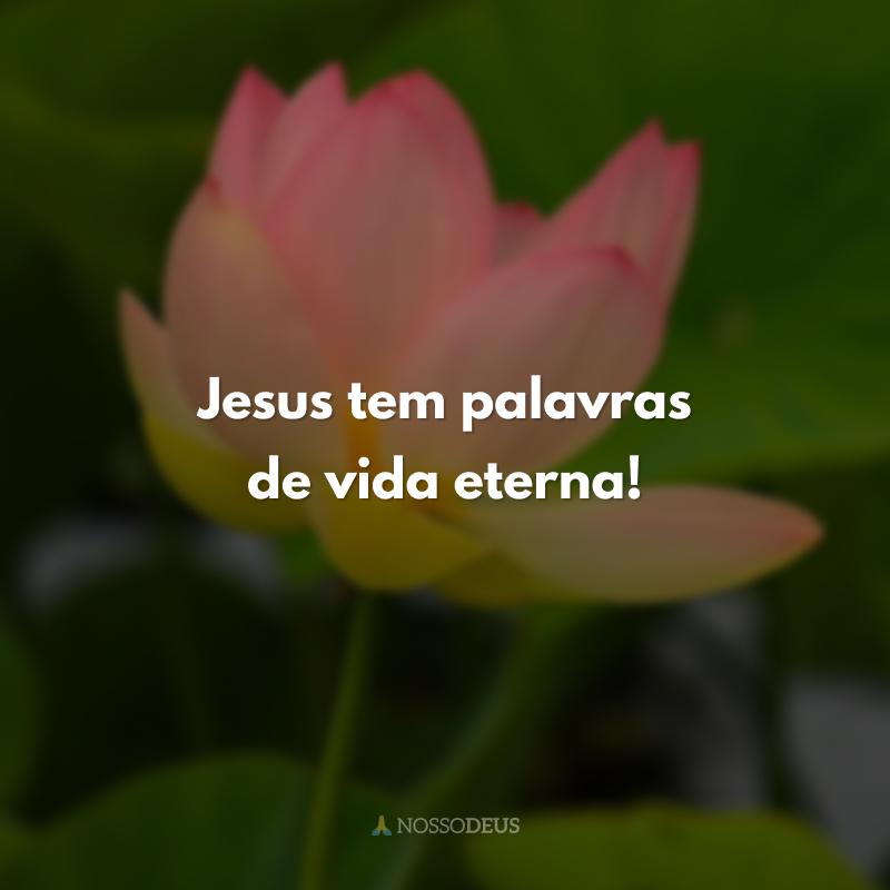 Jesus tem palavras de vida eterna!