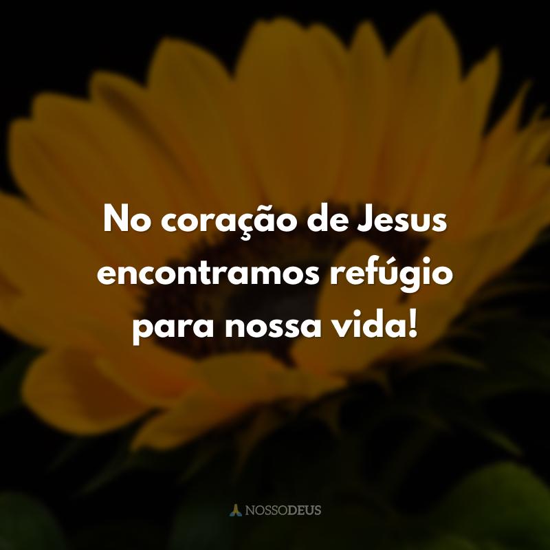 No coração de Jesus encontramos refúgio para nossa vida!