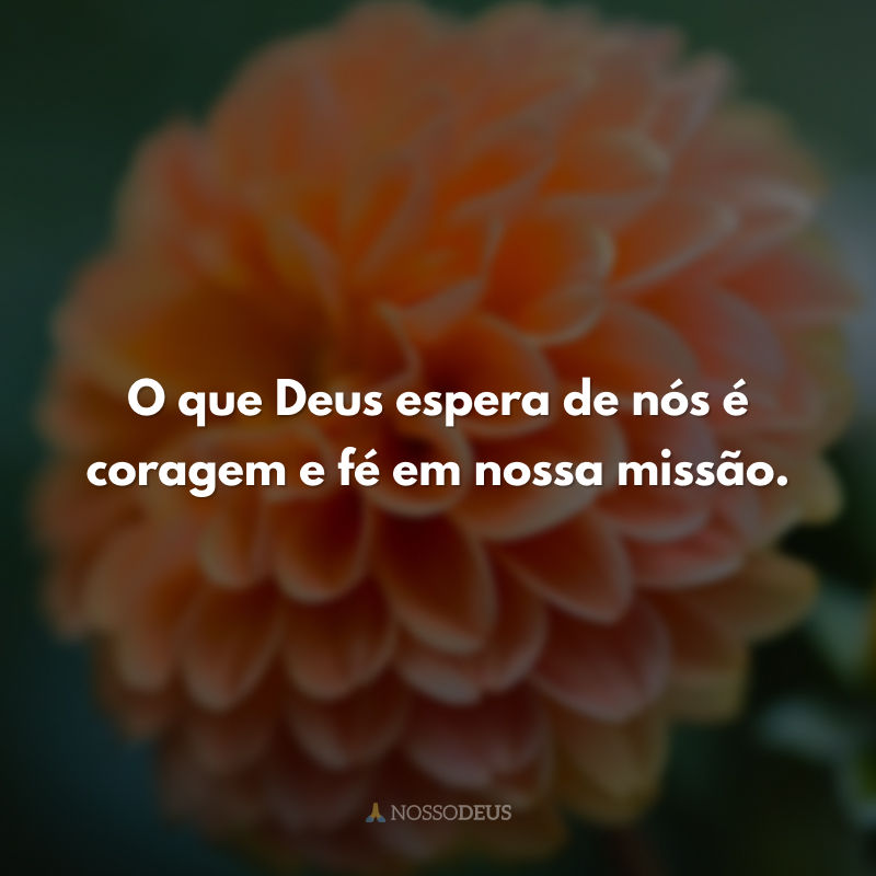 O que Deus espera de nós é coragem e fé em nossa missão.
