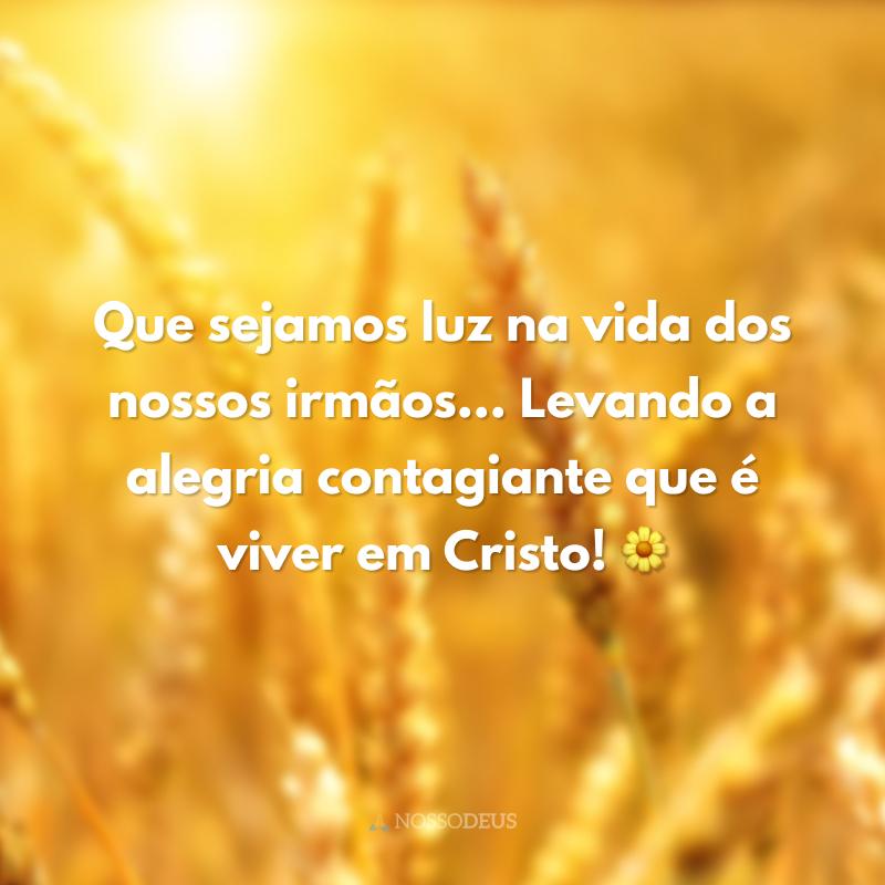 Que sejamos luz na vida dos nossos irmãos... Levando a alegria contagiante que é viver em Cristo! 🌼
