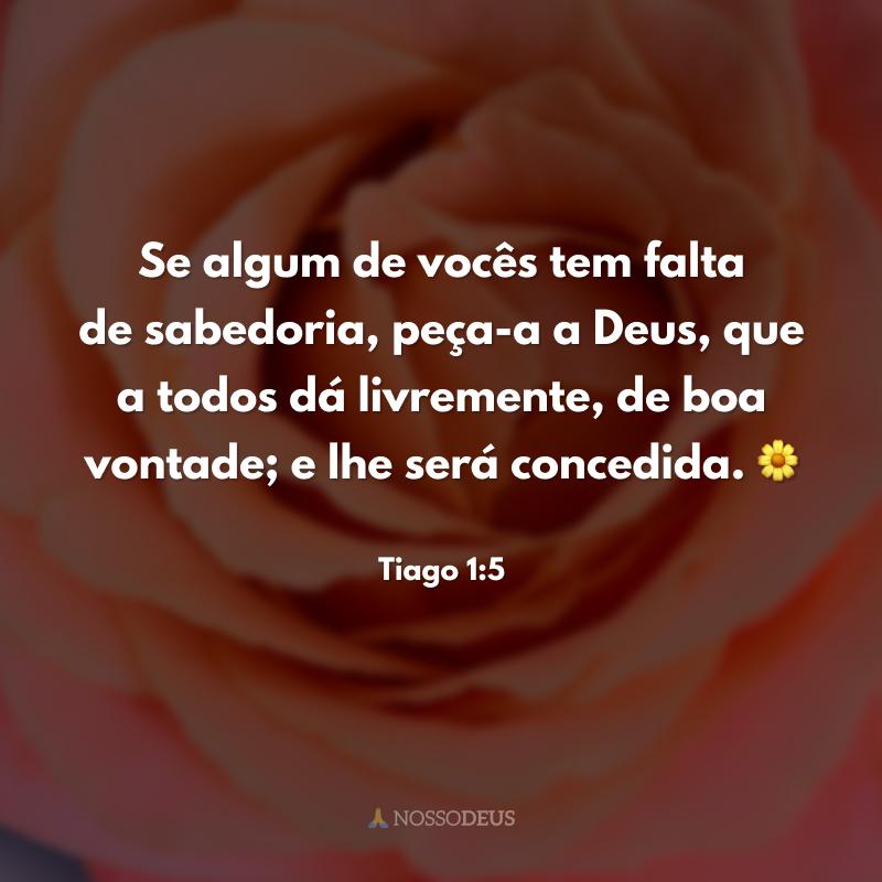 Se algum de vocês tem falta de sabedoria, peça-a a Deus, que a todos dá livremente, de boa vontade; e lhe será concedida. 🌼