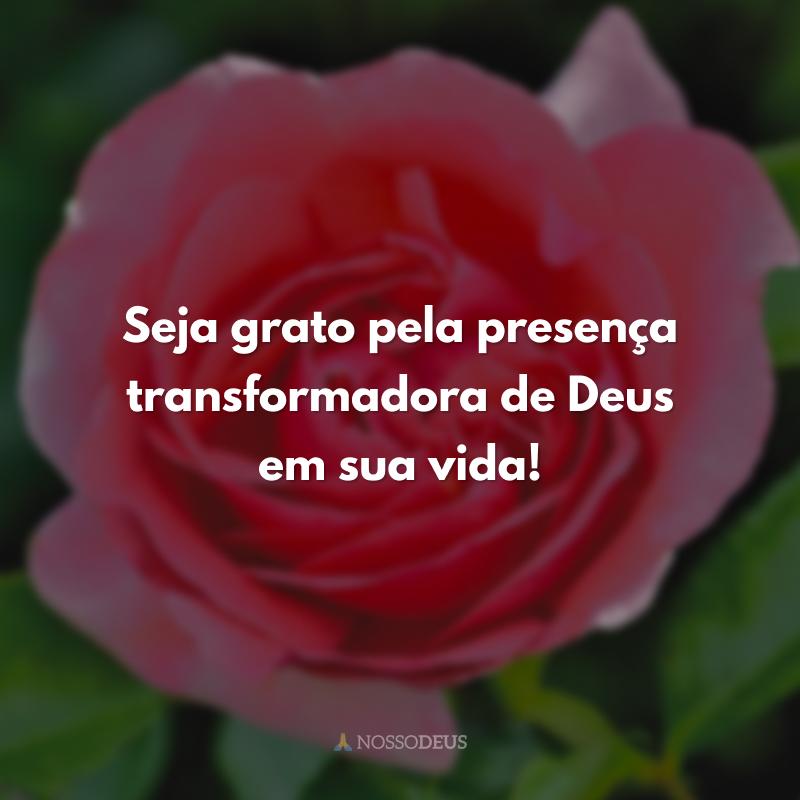 Seja grato pela presença transformadora de Deus em sua vida!