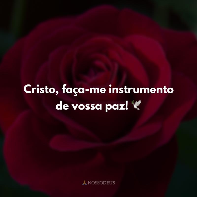 Cristo, faça-me instrumento de vossa paz! 🕊