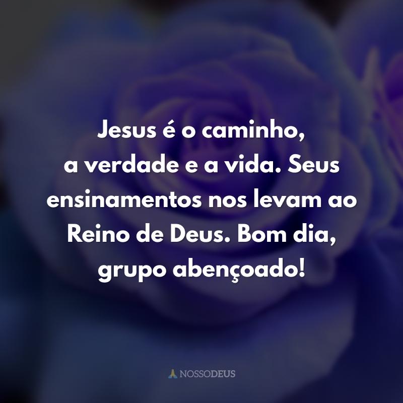 Jesus é o caminho, a verdade e a vida. Seus ensinamentos nos levam ao Reino de Deus. Bom dia, grupo abençoado!