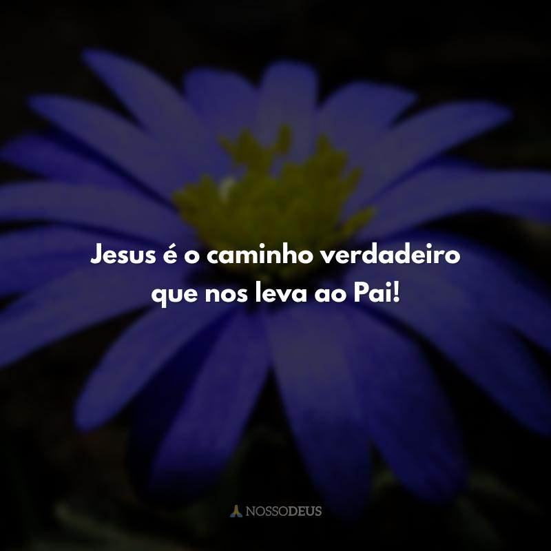 Jesus é o caminho verdadeiro que nos leva ao Pai!
