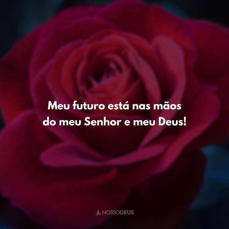 Meu futuro está nas mãos do meu Senhor e meu Deus!