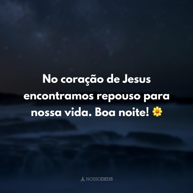 No coração de Jesus encontramos repouso para nossa vida. Boa noite! 🌼