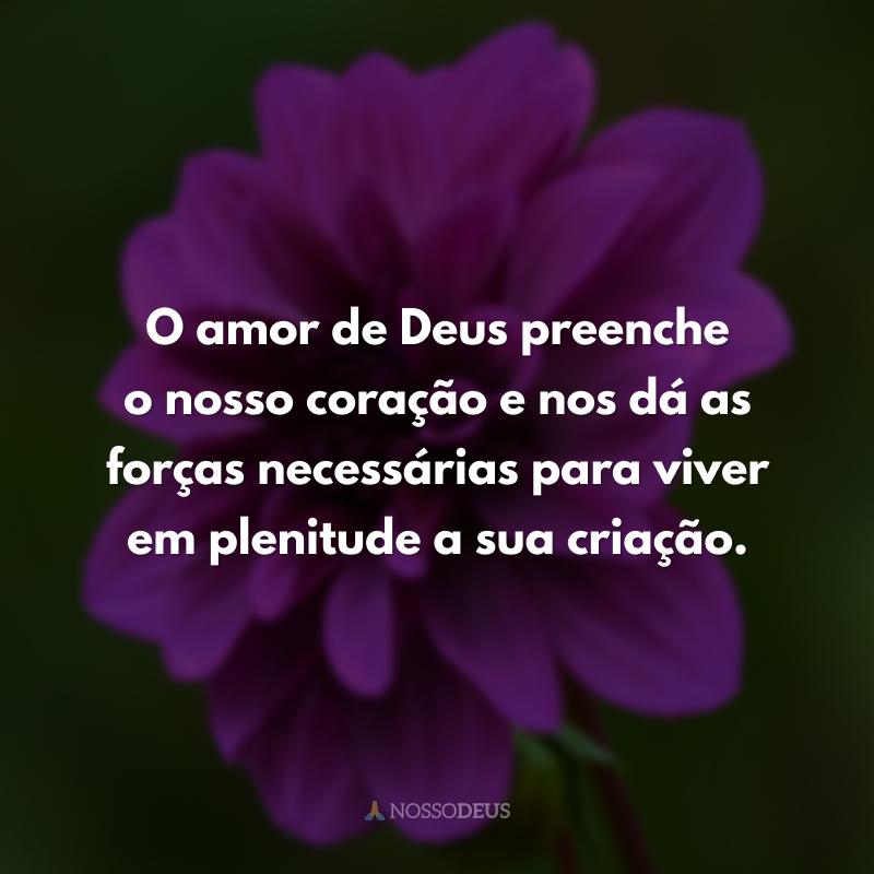 O amor de Deus preenche o nosso coração e nos dá as forças necessárias para viver em plenitude a sua criação.
