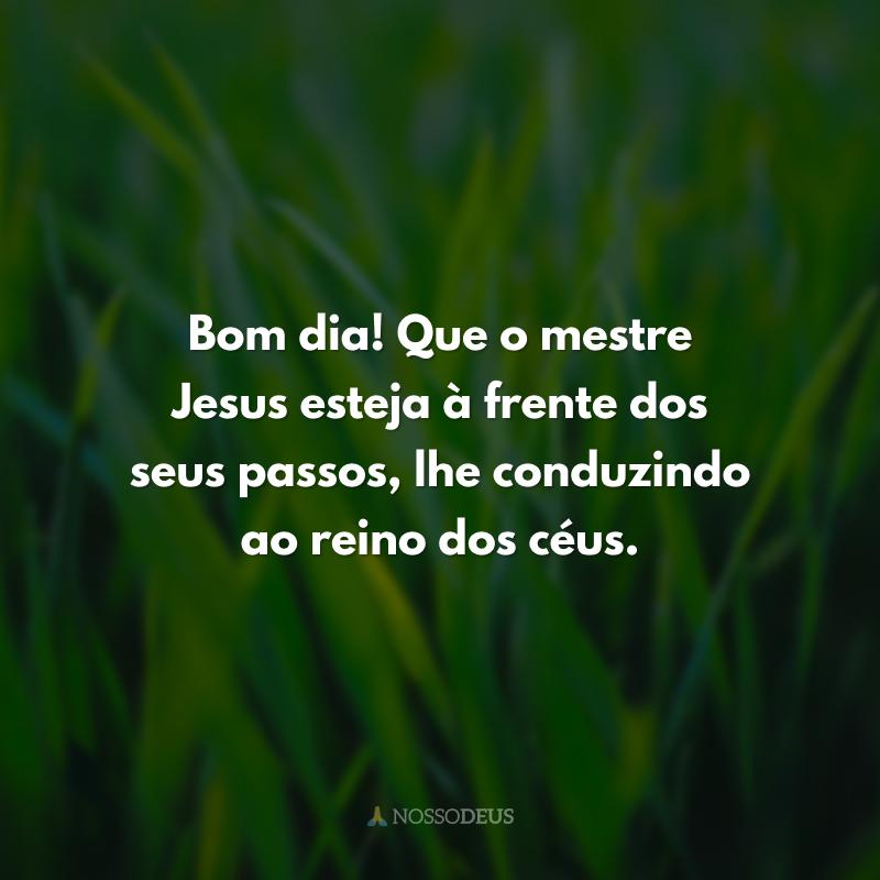Bom dia! Que o mestre Jesus esteja à frente dos seus passos, lhe conduzindo ao reino dos céus.