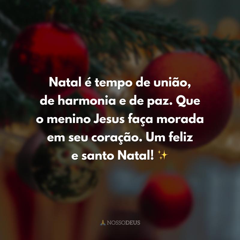 Natal é tempo de união, de harmonia e de paz. Que o menino Jesus faça morada em seu coração. Um feliz e santo Natal! ✨