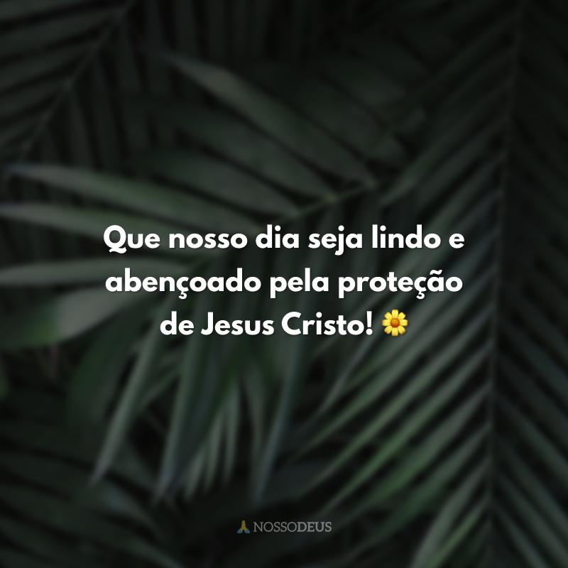 Que nosso dia seja lindo e abençoado pela proteção de Jesus Cristo! 🌼