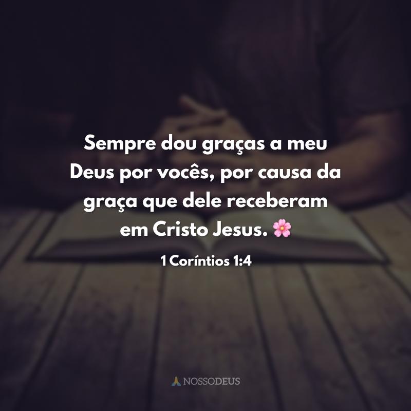 Sempre dou graças a meu Deus por vocês, por causa da graça que dele receberam em Cristo Jesus. 🌸