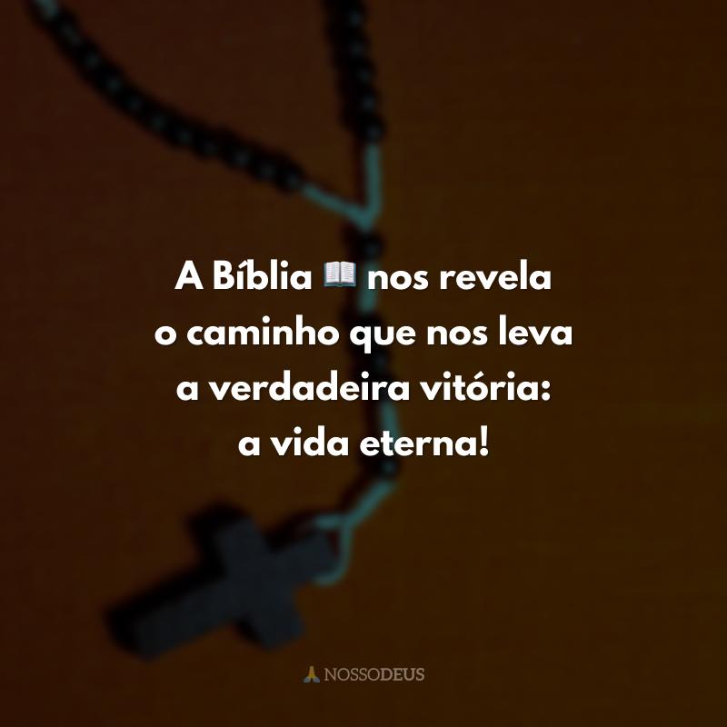 A Bíblia 📖 nos revela o caminho que nos leva a verdadeira vitória: a vida eterna!