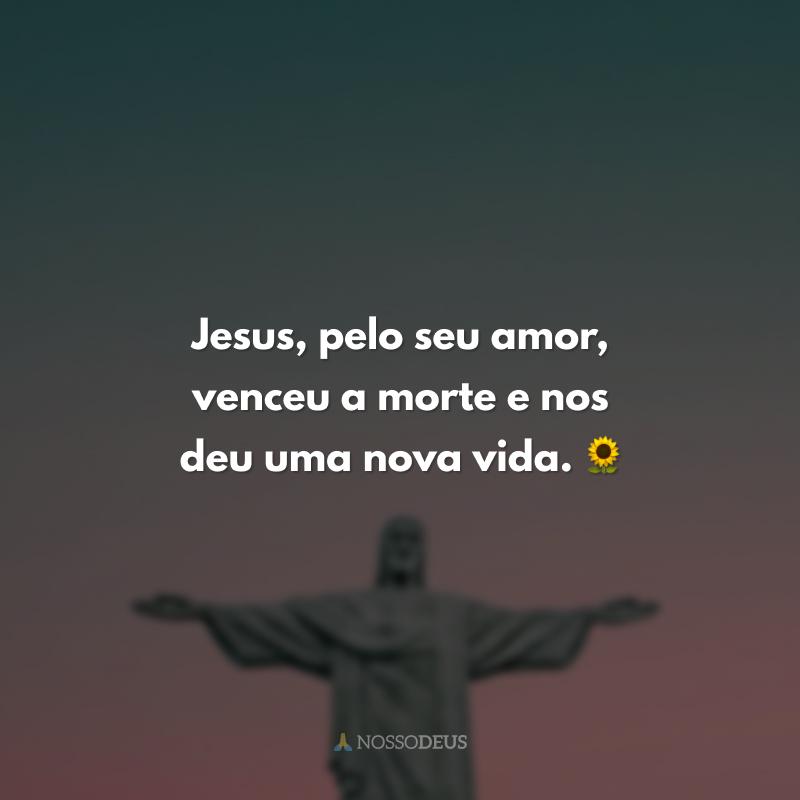 Jesus, pelo seu amor, venceu a morte e nos deu uma nova vida. 🌻