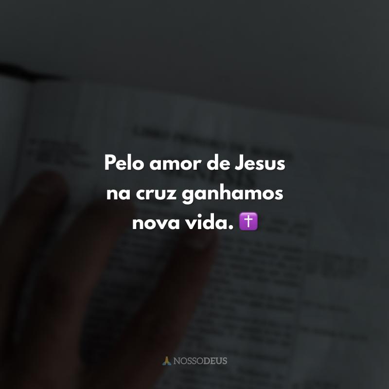 Pelo amor de Jesus na cruz ganhamos nova vida. ✝