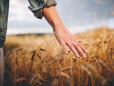 30 frases de renovação espiritual para viver em plenitude