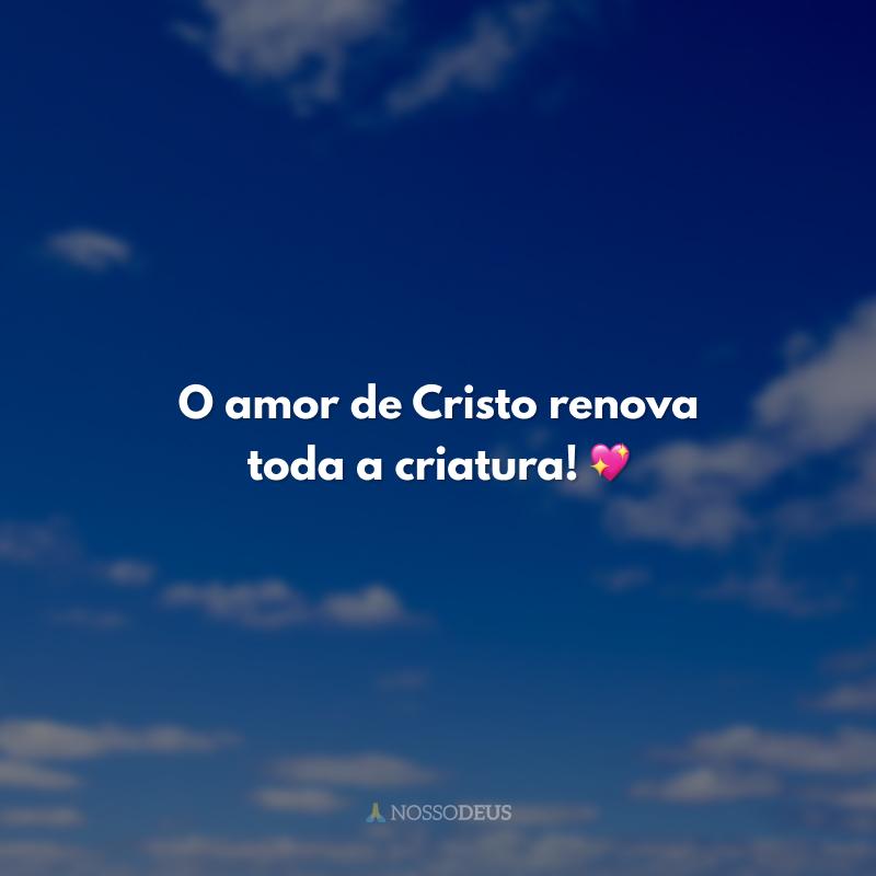 O amor de Cristo renova toda a criatura! 💖