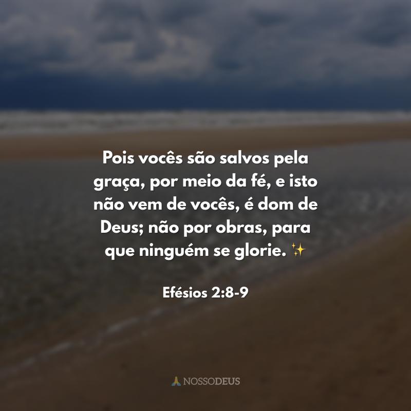 Pois vocês são salvos pela graça, por meio da fé, e isto não vem de vocês, é dom de Deus; não por obras, para que ninguém se glorie. ✨