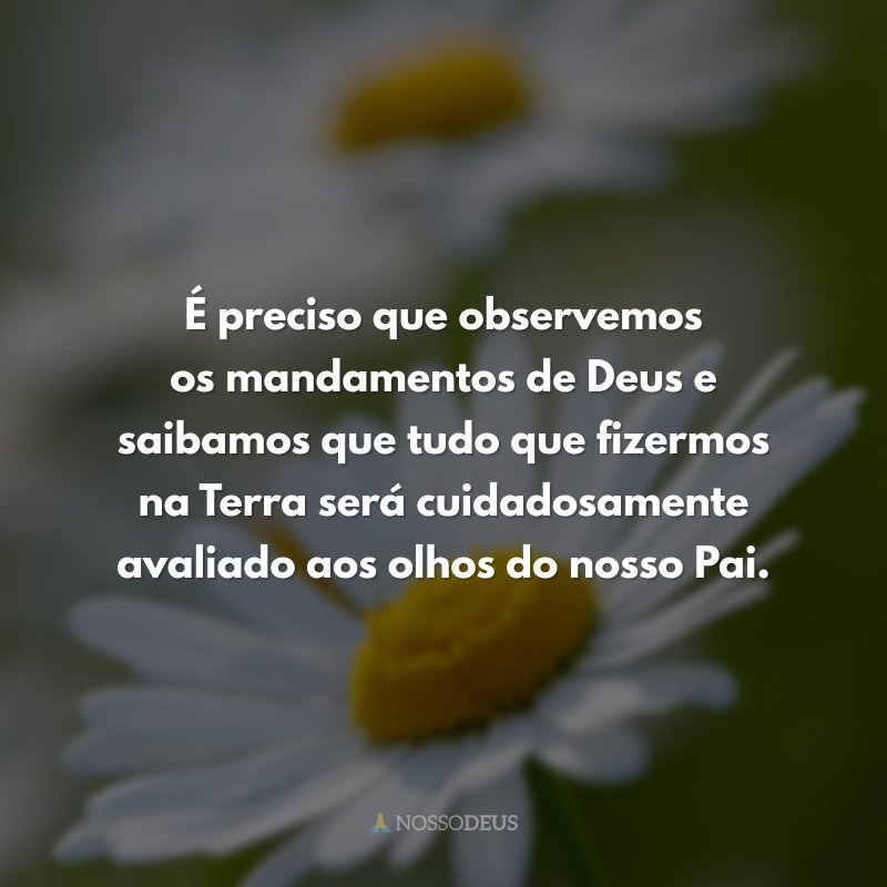 É preciso que observemos os mandamentos de Deus e saibamos que tudo que fizermos na Terra será cuidadosamente avaliado aos olhos do nosso Pai.