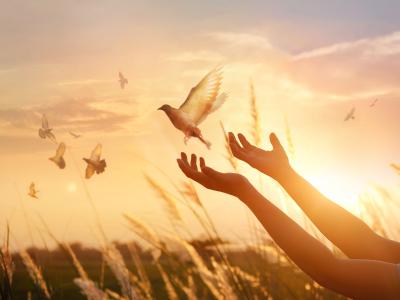 25 frases de Salmos de bom dia para bendizer a Deus ao amanhecer