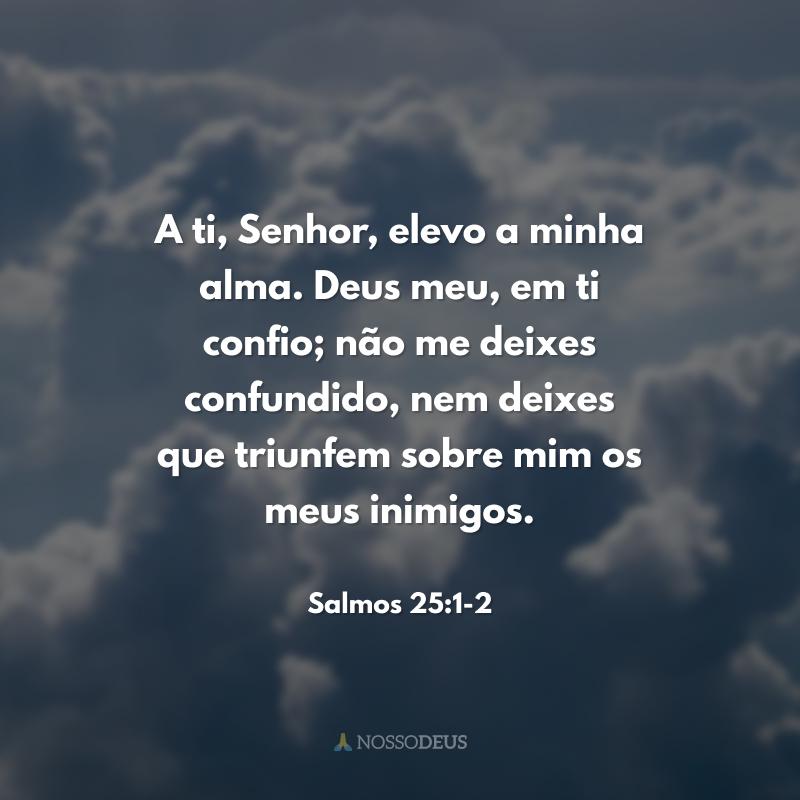 A ti, Senhor, elevo a minha alma. Deus meu, em ti confio; não me deixes confundido, nem deixes que triunfem sobre mim os meus inimigos.