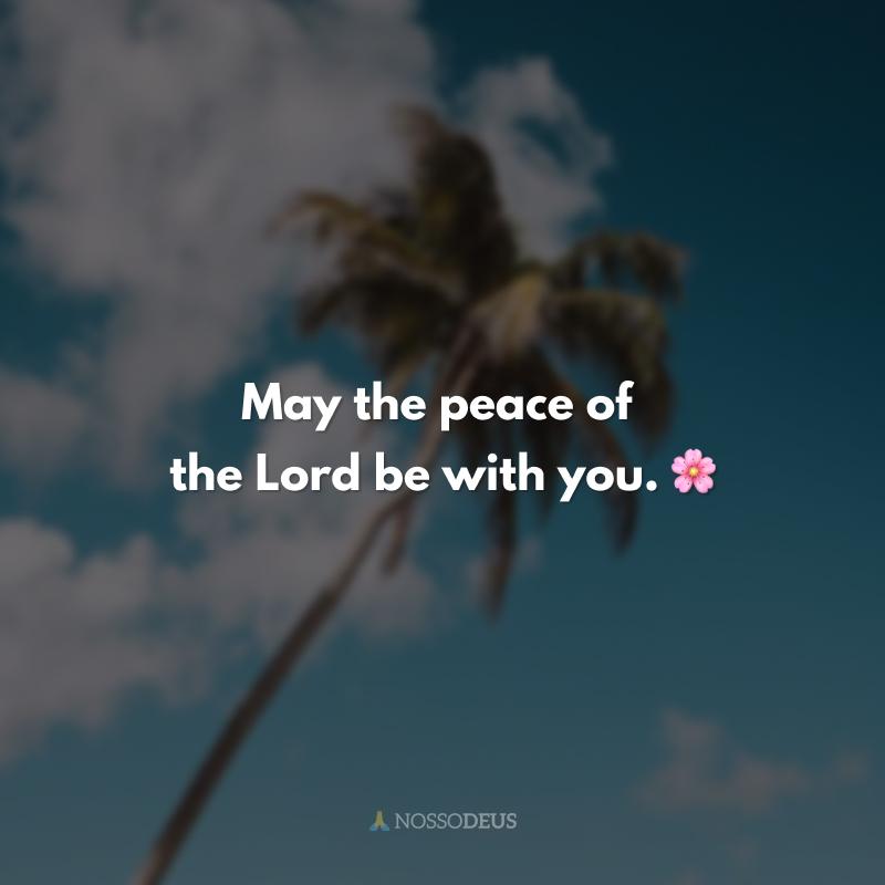 May the peace of the Lord be with you. 🌸 (Que a paz do Senhor esteja contigo.)