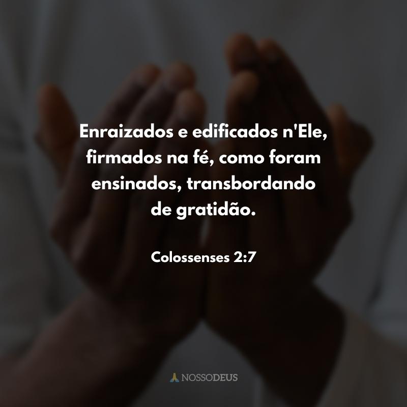 Enraizados e edificados n'Ele, firmados na fé, como foram ensinados, transbordando de gratidão.