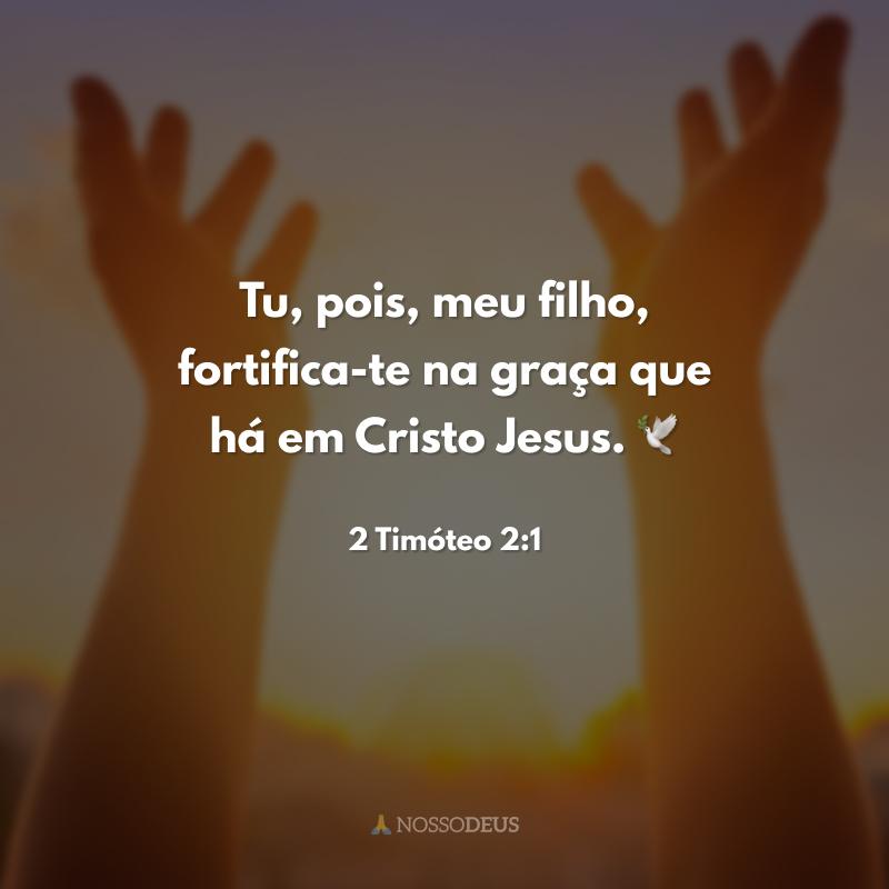 Tu, pois, meu filho, fortifica-te na graça que há em Cristo Jesus. 🕊