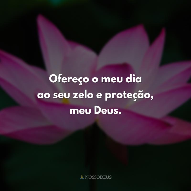 Ofereço o meu dia ao seu zelo e proteção, meu Deus.
