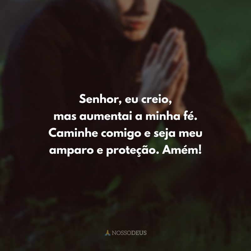 Senhor, eu creio, mas aumentai a minha fé. Caminhe comigo e seja meu amparo e proteção. Amém!