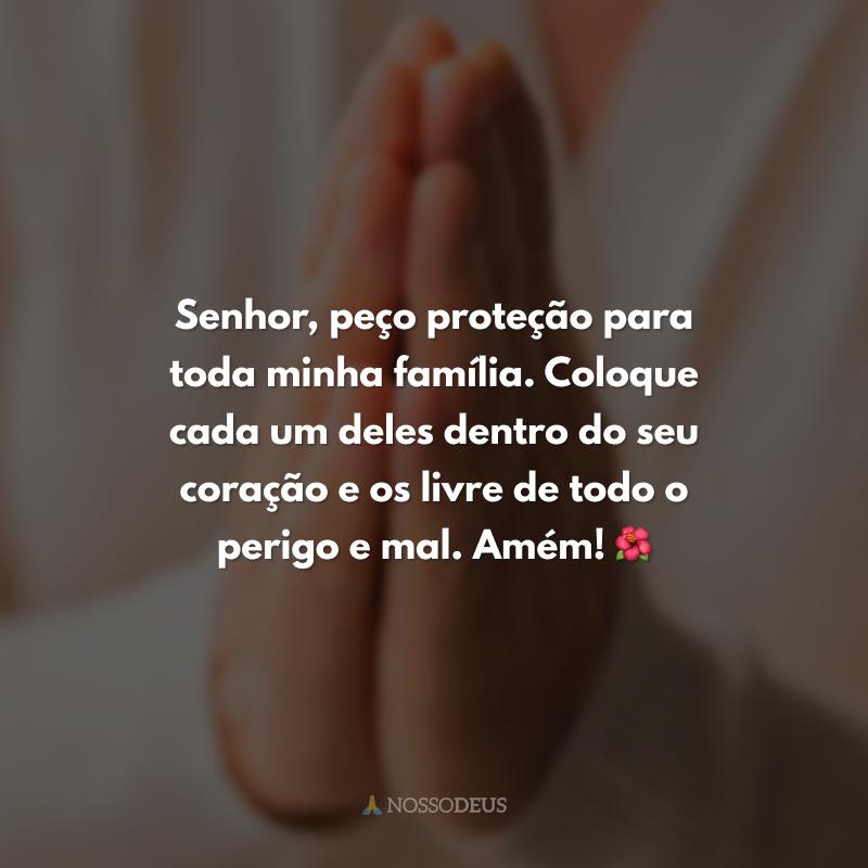 Senhor, peço proteção para toda minha família. Coloque cada um deles dentro do seu coração e os livre de todo o perigo e mal. Amém! 🌺