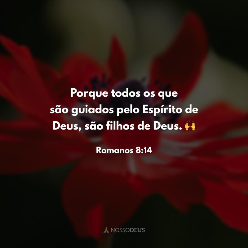 Porque todos os que são guiados pelo Espírito de Deus, são filhos de Deus. 🙌